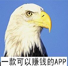 抖音点赞评论就能赚钱 来白头鹰做任务靠谱有保障