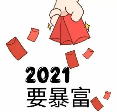 对于2021年的若干畅想