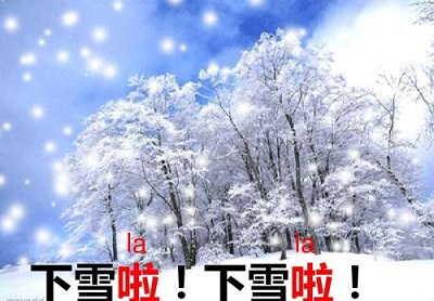 这个春节一起去看雪吧!