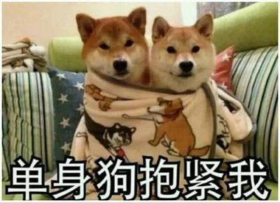 dsg.jpg 单身狗的七夕前夜 手万传博客