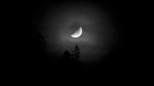 深夜里能让我们成长的,是自己炖的鸡汤