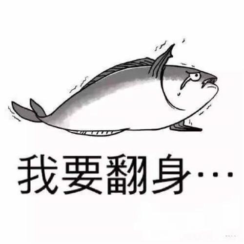 先当好一条咸鱼,再谈梦想
